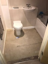Bathroom sub floor replacement
